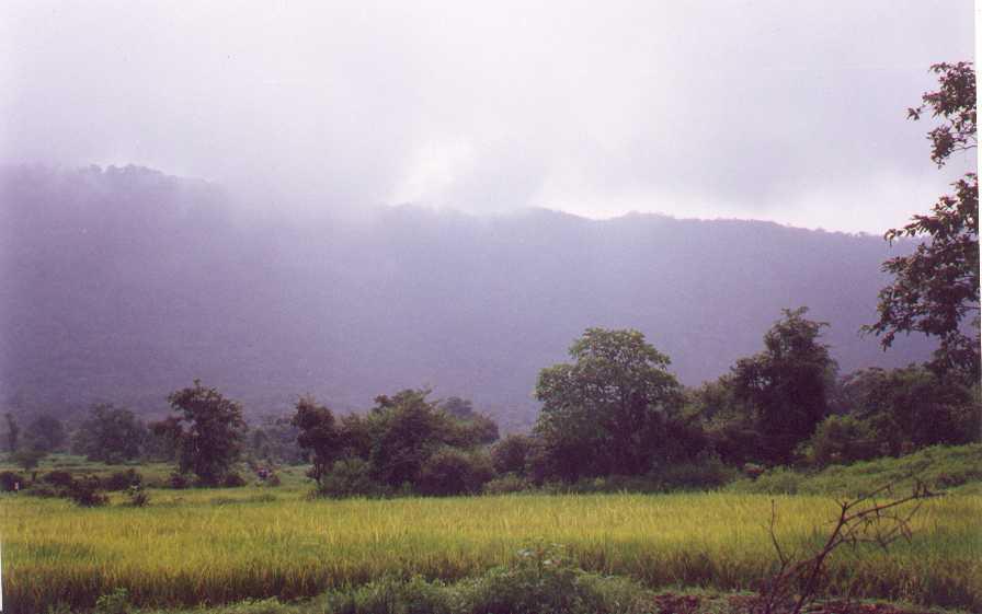 bhimashankar.jpg